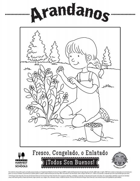 coloring sheet english pdf spanish pdf