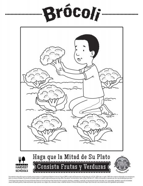Food Coloring In Spanish Best Coloring Sheets And Food Hero Free