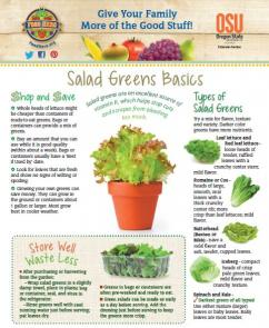 Food Hero Monthly Cover Salad Greens