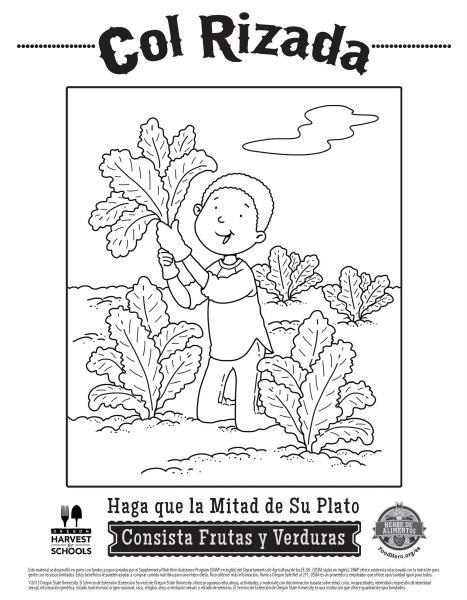 coloring sheet english pdf spanish pdf