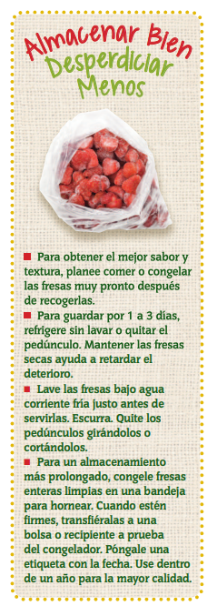 Fresas - Almacenar Bien Desperdiciar Menos