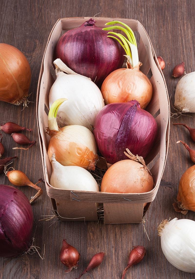 Various Onions