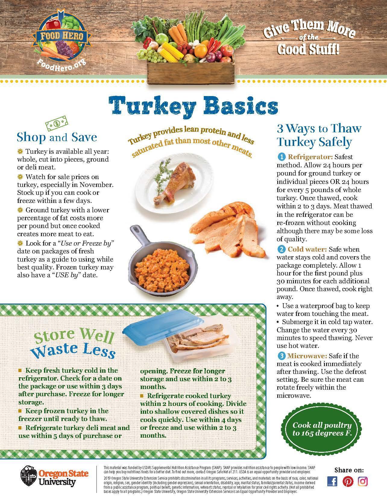 Turkey Basics