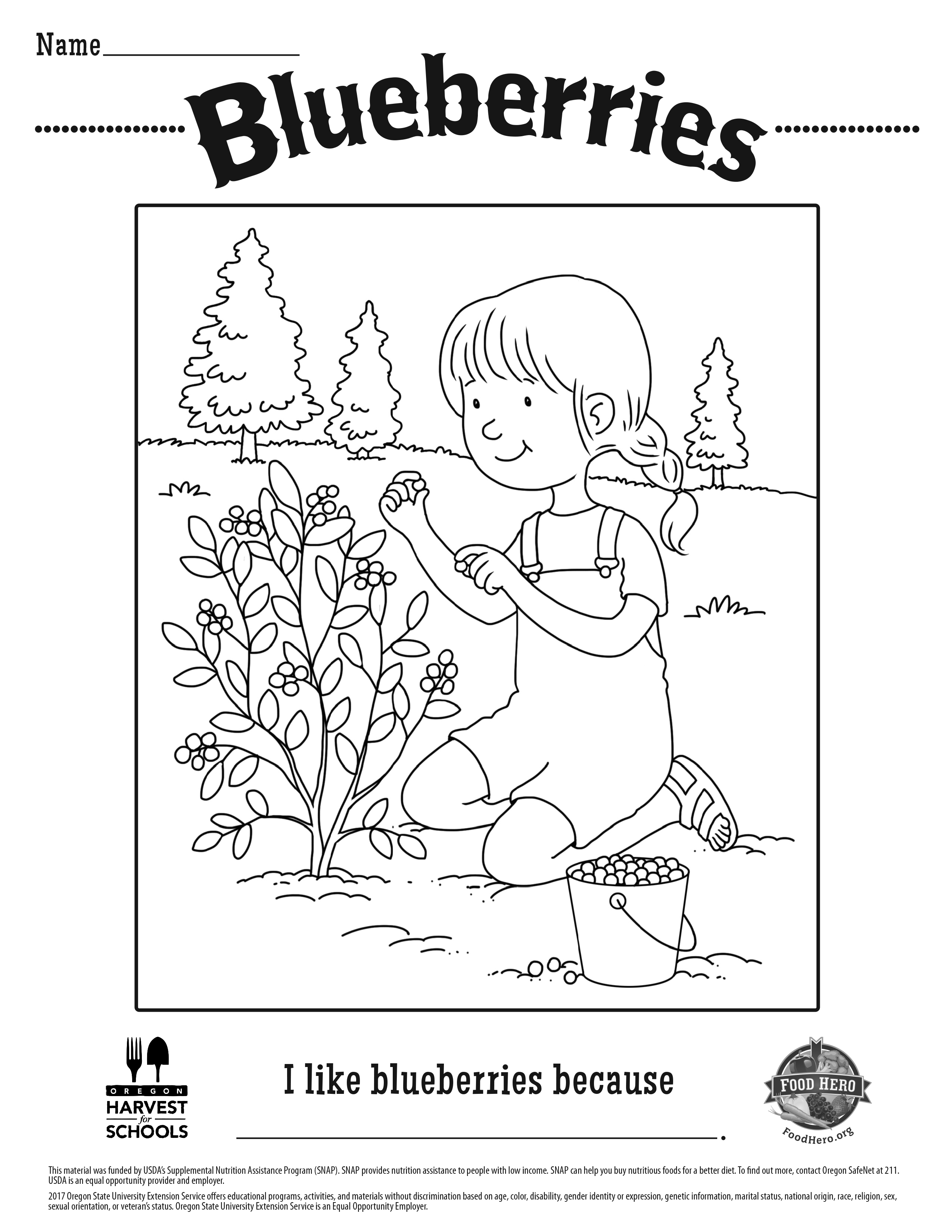 Blueberry Coloring Sheet
