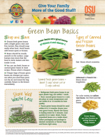 green bean basics