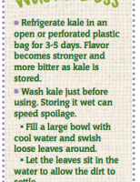 Store Well Waste Less Kale