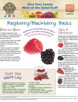 Raspberry and Blackberry Food Hero Monthly