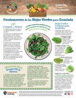 Mensual de Hojas Verdes para Ensalada