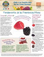 Frambuesas y Moras - Compras y Ahorros