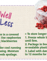 Store Well Waste Less Caneberries