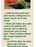 Store Well Waste Less Leeks