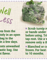 Store Well Waste Less Turnips