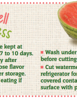 Store Well Waste Less Watermelon