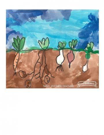 Niños Art Winners - Betabeles