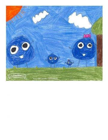 Niños Art Winners - Arándanos