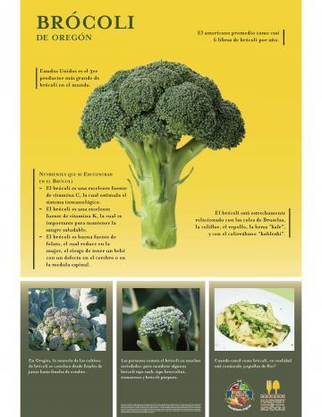 Brócoli Poster
