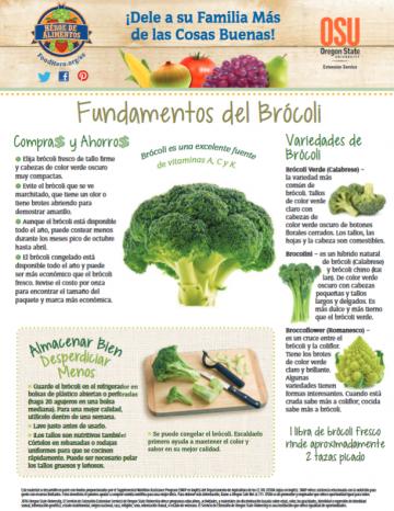 Brócoli Últimos consejos Alimentos