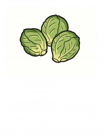 Ilustración de Coles de Bruselas