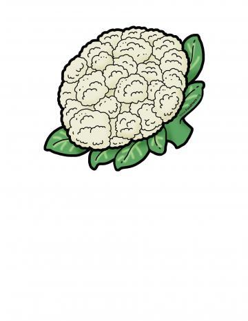 Ilustratión de Coliflor