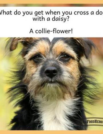 Cauliflower Joke