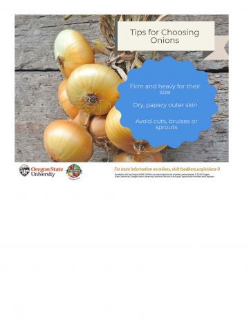 Tips for Choosing Onions