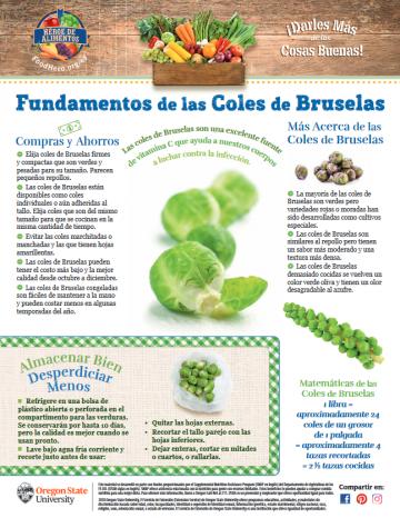 Coles de Bruselas Últimos consejos Alimentos