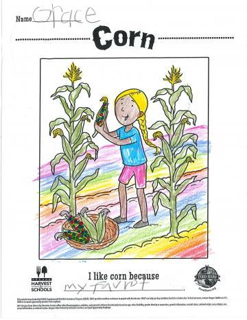 Colored In Corn Coloring Sheet