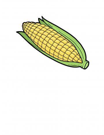Ilustración de Elote