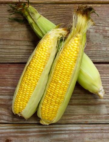 Image of Corn