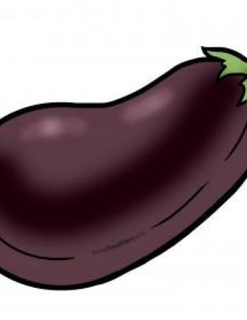 Eggplant Illustration