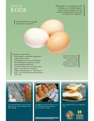 Eggs Oregon Harvest Poster