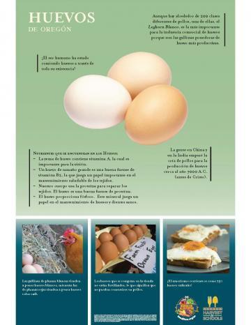Póster de Huevos