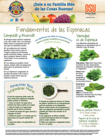 Espinacas Últimos consejos Alimentos