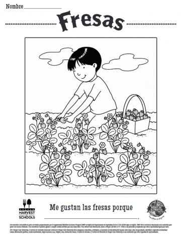 Hojas para Colorear de Fresas