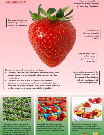 Póster de Fresas