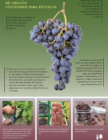 Póster de Uvas
