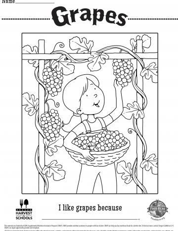 Grape Coloring Sheet
