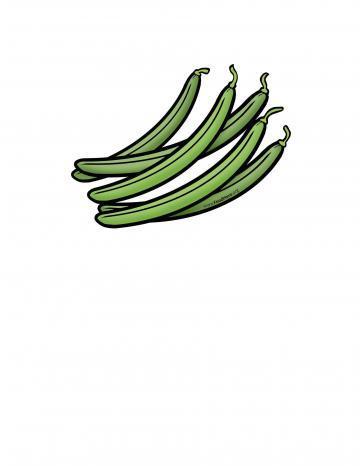 Green Bean Illustration