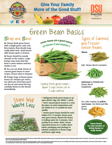 Green Beans Monthly Magazine