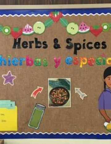 Herbs and Spices Bulletin Board Example