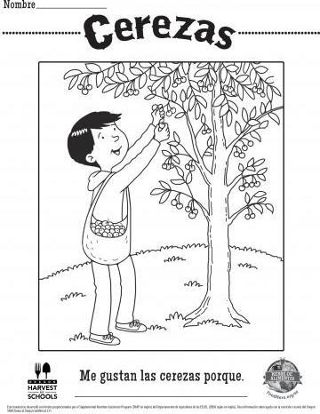 Hojas para Colorear de Cerezas