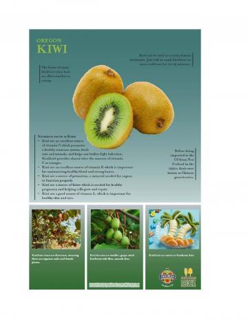Kiwi Oregon Harvest Poster