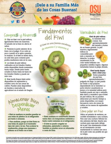 Kiwi Últimos consejos Alimentos