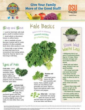 Kale Monthly Magazine