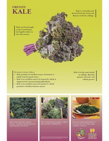Kale Harvest Poster