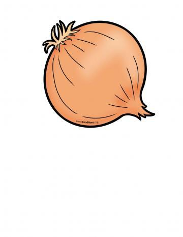 Ilustración de Cebolla