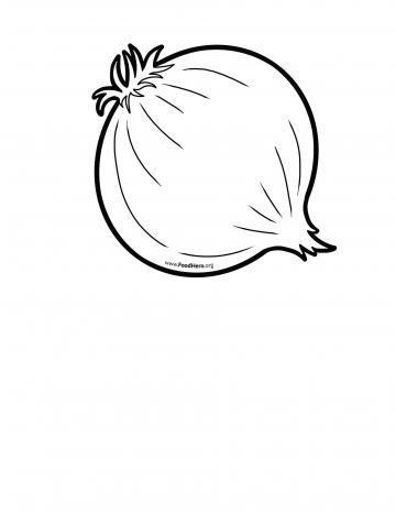 Cebolla Línea Negra