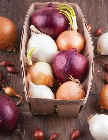 Image of Onions