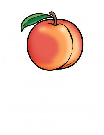 Peach Illustration