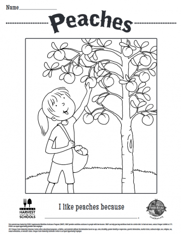 Peaches Coloring Sheet